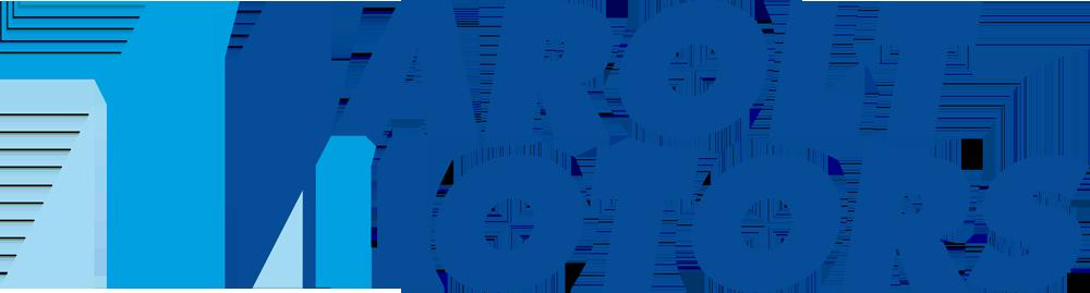 Marolt Motors
